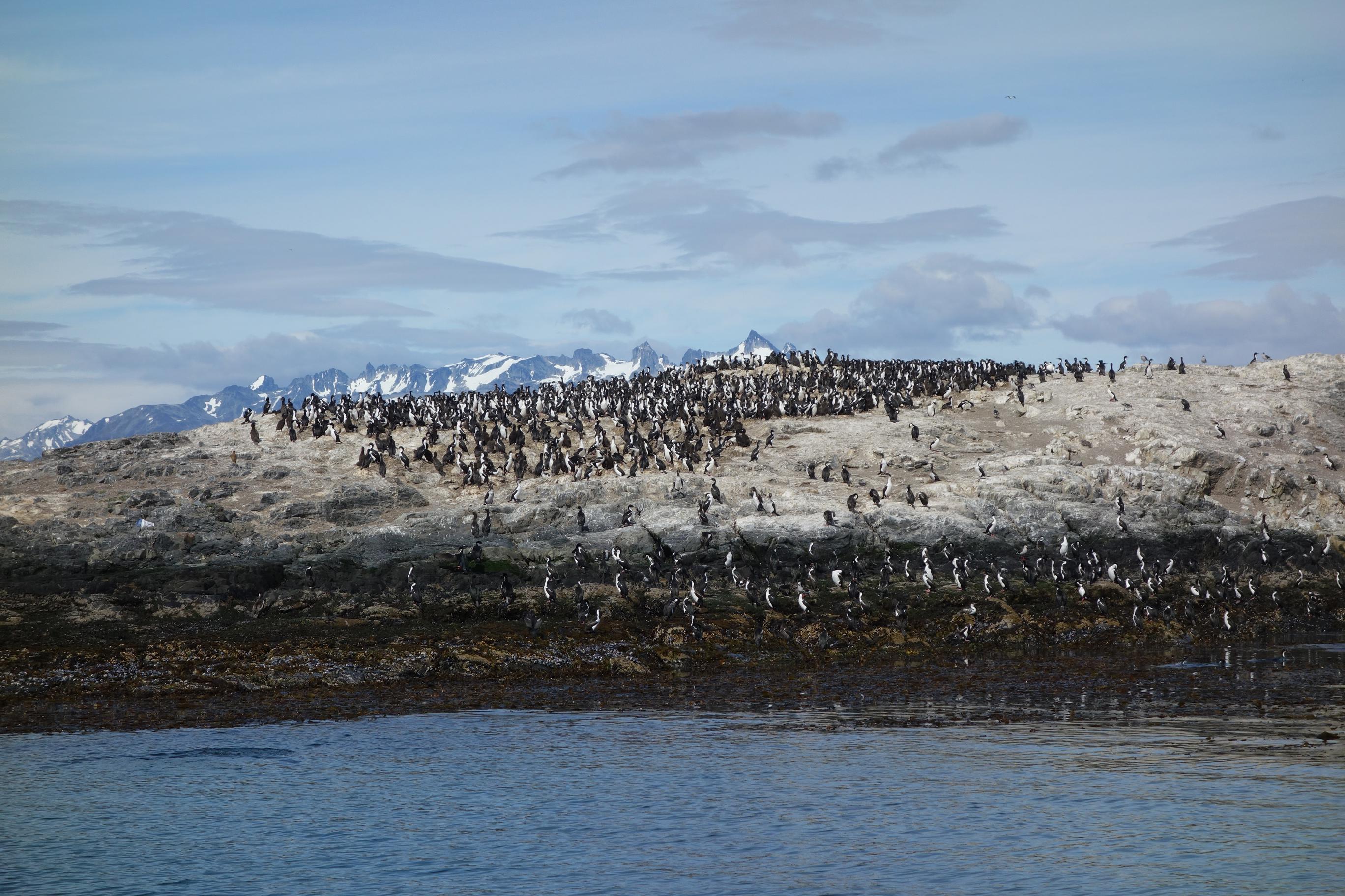 Through the lens: Tierra del Fuego