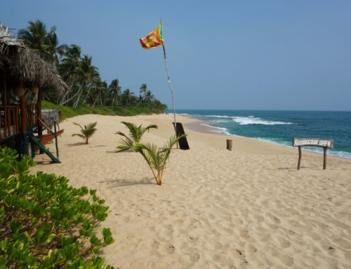 Adventure video: Sri Lanka beaches and highlands