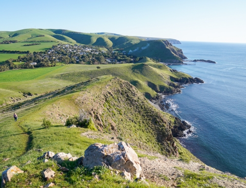 Through the lens: Fleurieu Peninsula in South Australia
